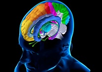 Лечение ритмами головного мозга (индукционная терапия)