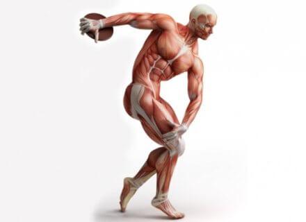 kineziologiya-kineziterapiya-550x400_c